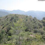 Posiciones defensivas de Las Tetas en la Serra d'Espadà - 04