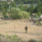 Batalla del Ebro 2017 - 31