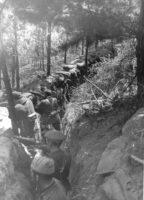 El Batallón Celta: Os Leóns do Norte
